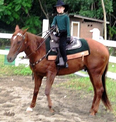 Poco and Rosie Horse Show Training